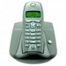 Телефоны DECT Siemens Gigaset С200 Safary